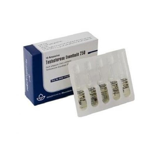Testosteron-Enatat-250mg